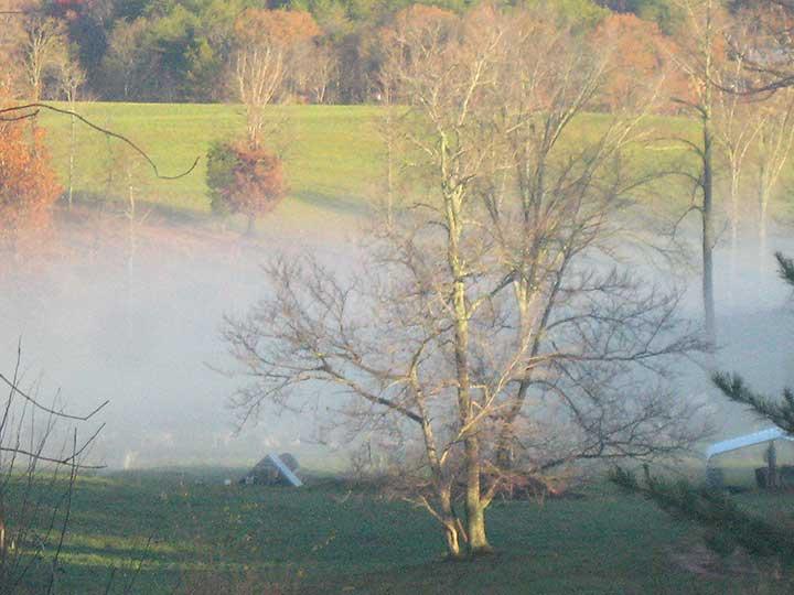 Foggy-Knob-Header-Picture.jpg