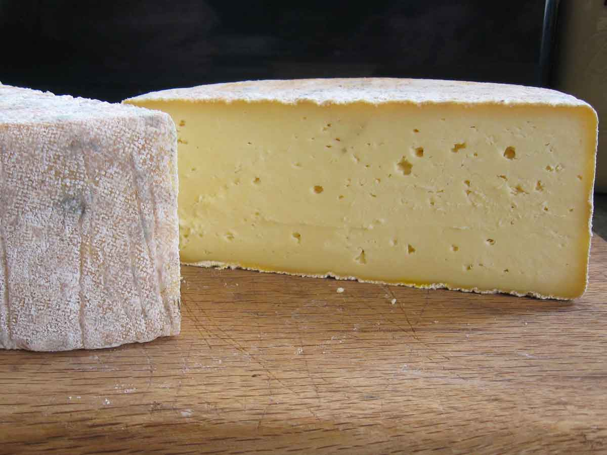 Caerphilly, Cheddar-style cheese with natural rind.