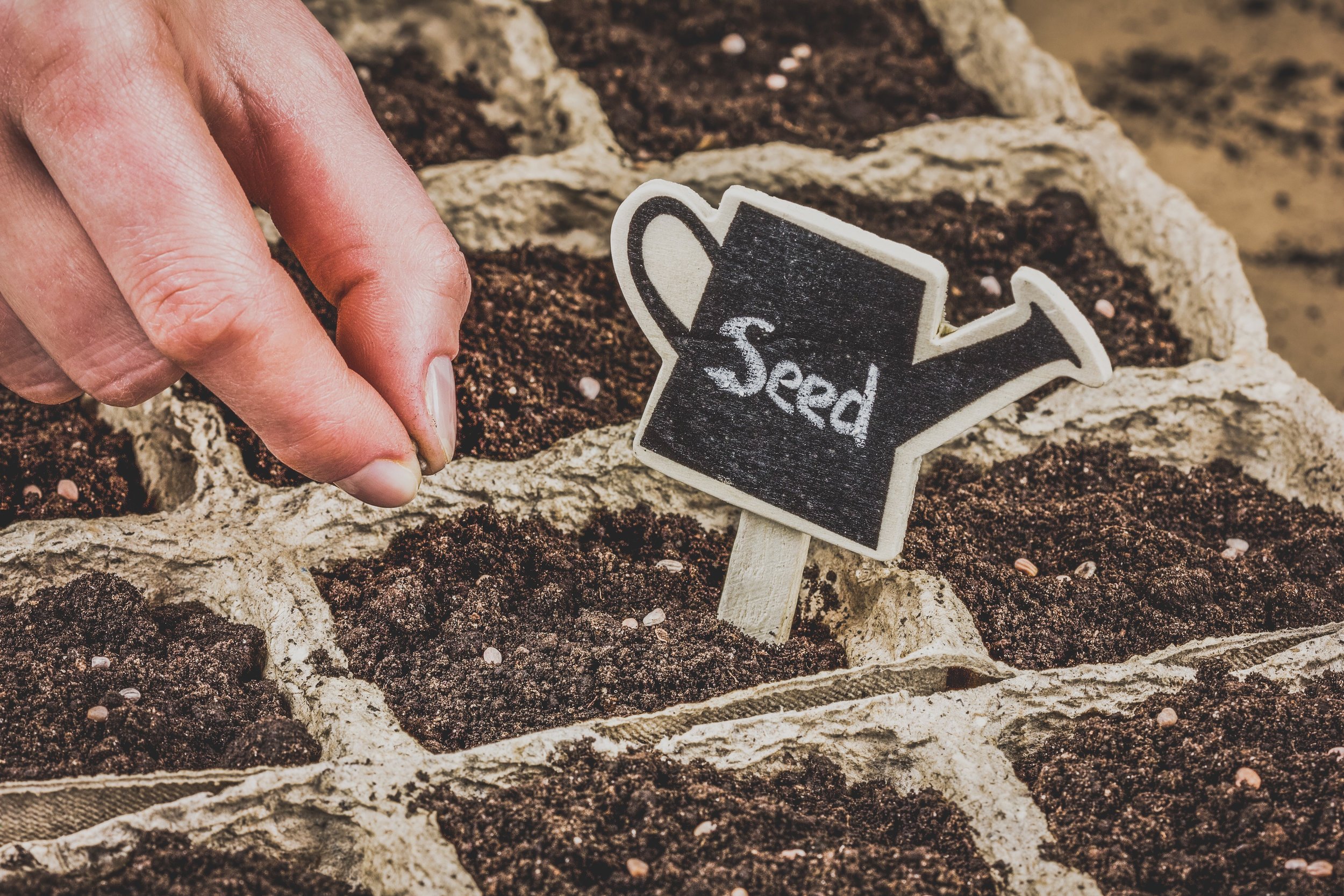 More on the Seed SovereigntyProgramme -