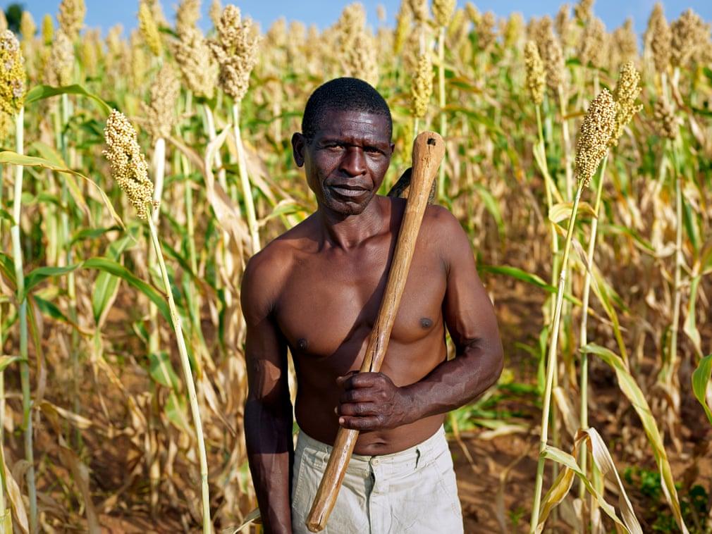 ZIMBABWE, PIETER HUGO, THE MUONDE TRUSTE