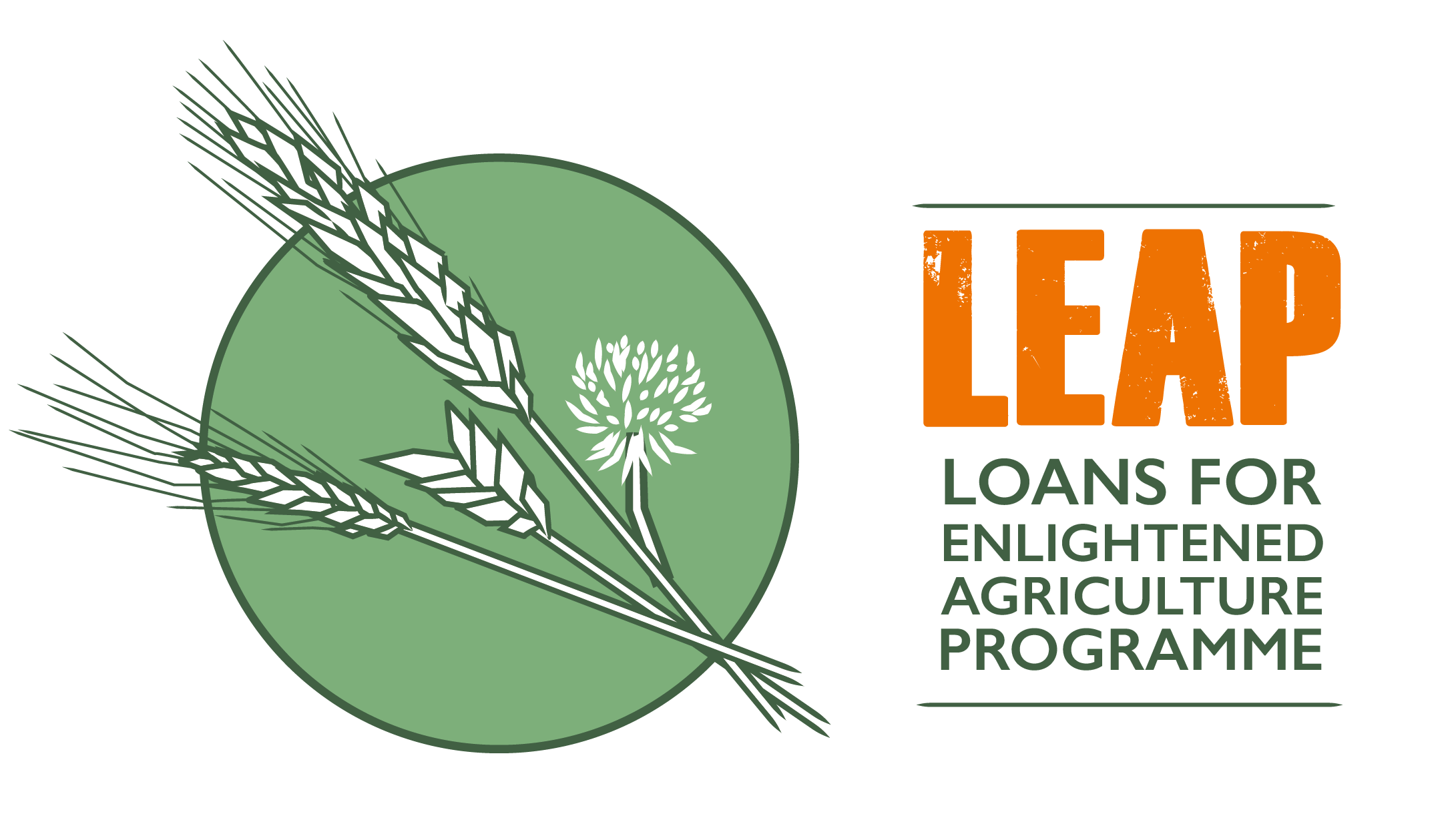 Loan-for-enlightened-agriculture-a-team-foundation