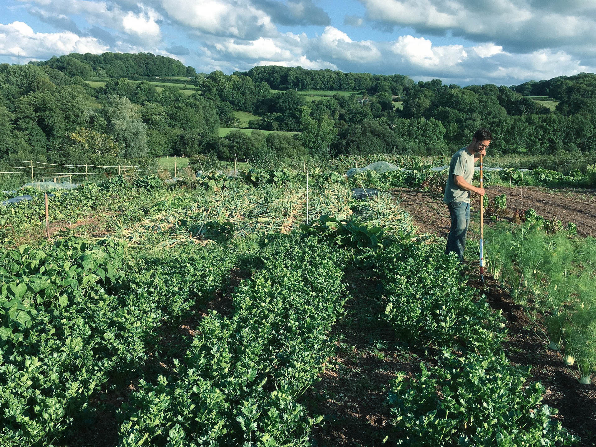 An ELC tenant in their market garden at Greenham Reach, Devon.