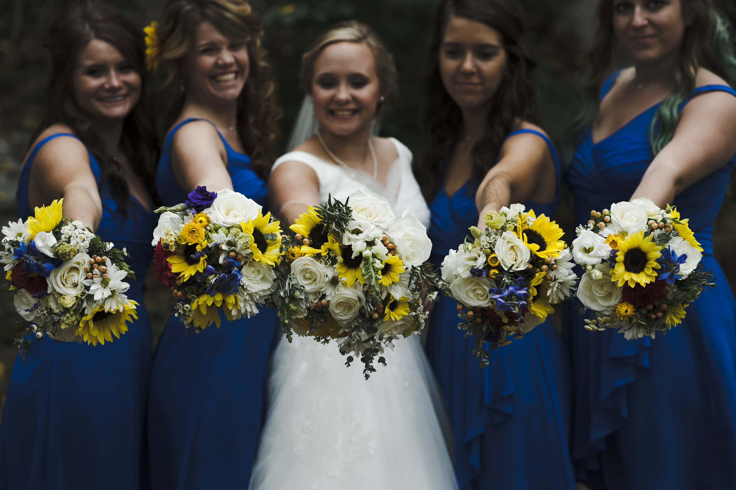 The yellow and white is striking against that royal blue!
