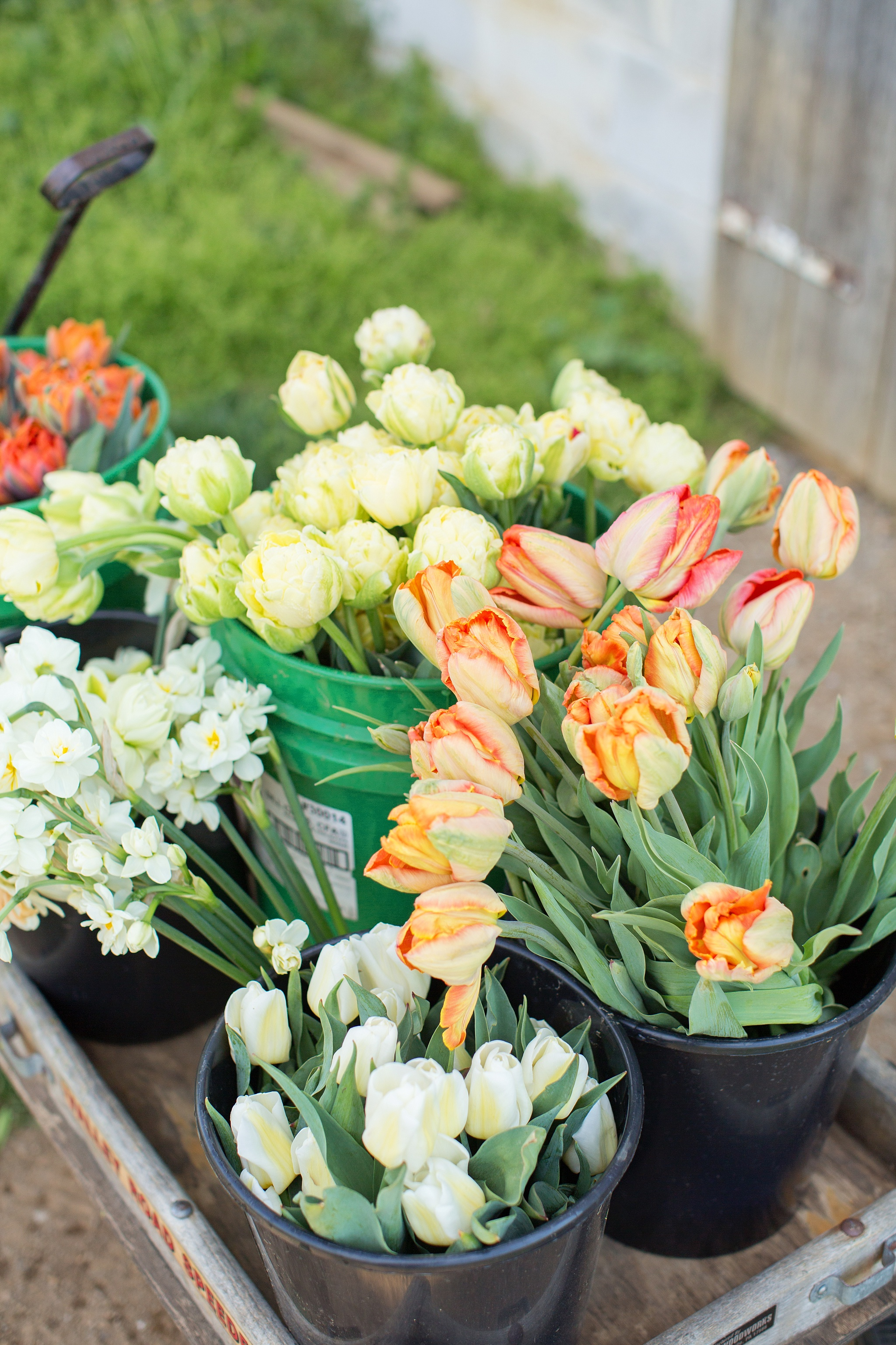 We gather the flowers for you and hand them off to you for your creative touch!