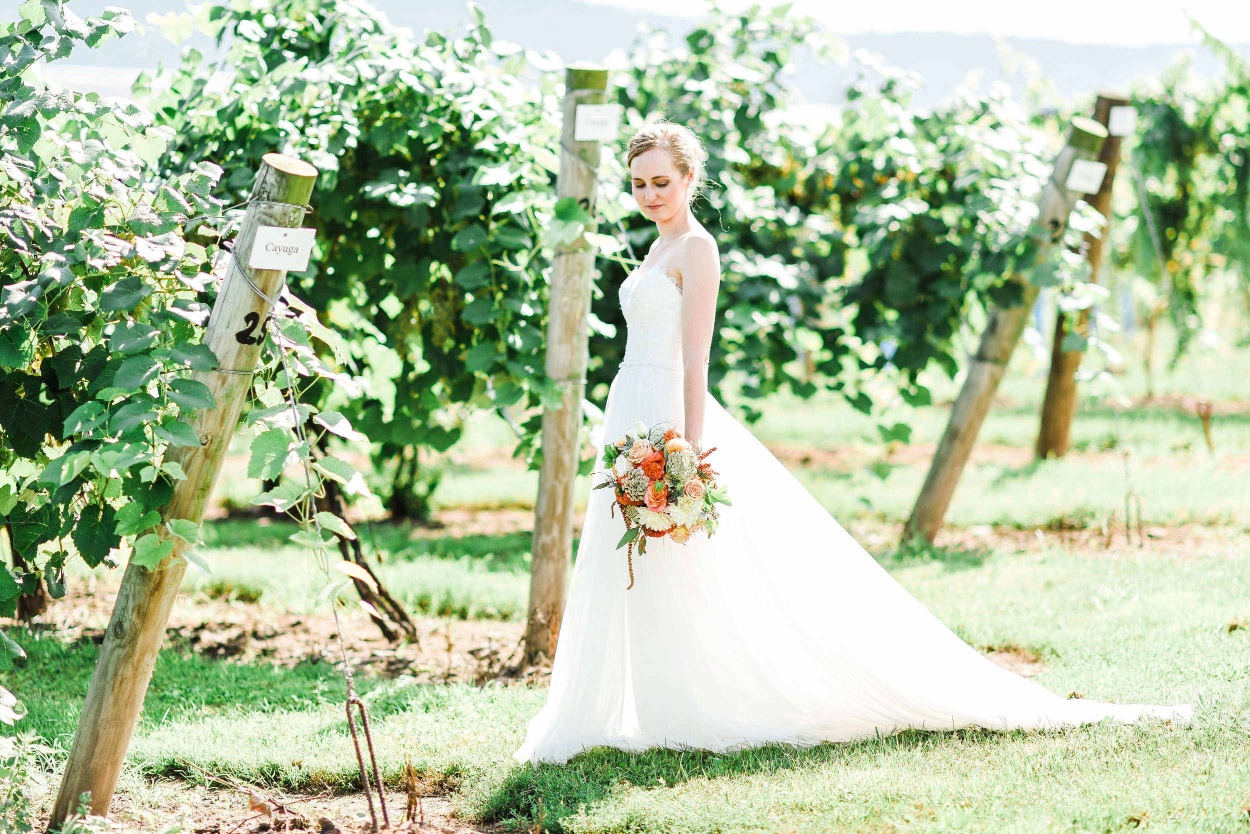 The Bride amongst the grapevines with her bouquet hanging gracefully at her side, the perfect capture!