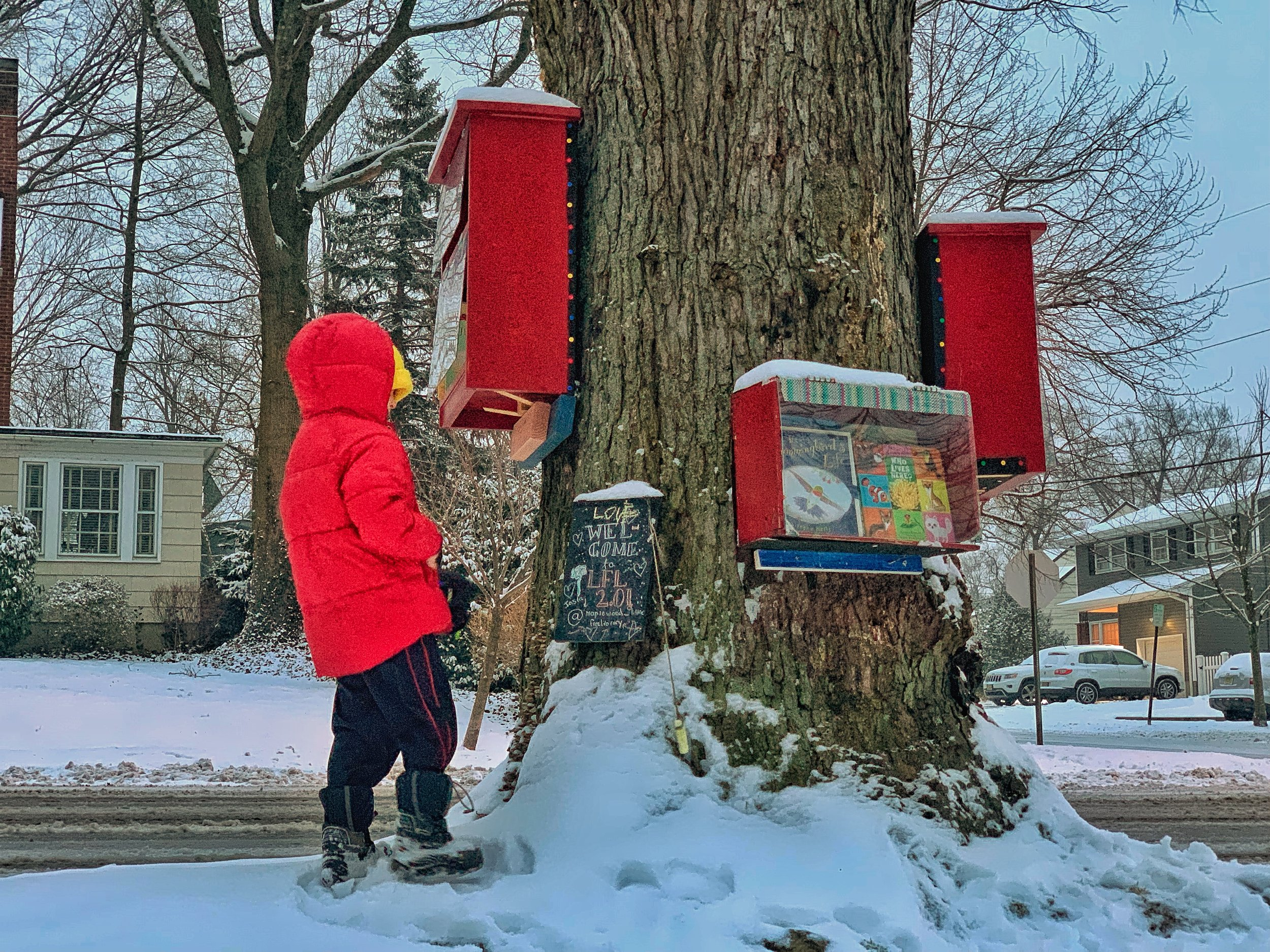 A little reader choosing books on a snow day at the corner of Richmond + Baldwin in Maplewood