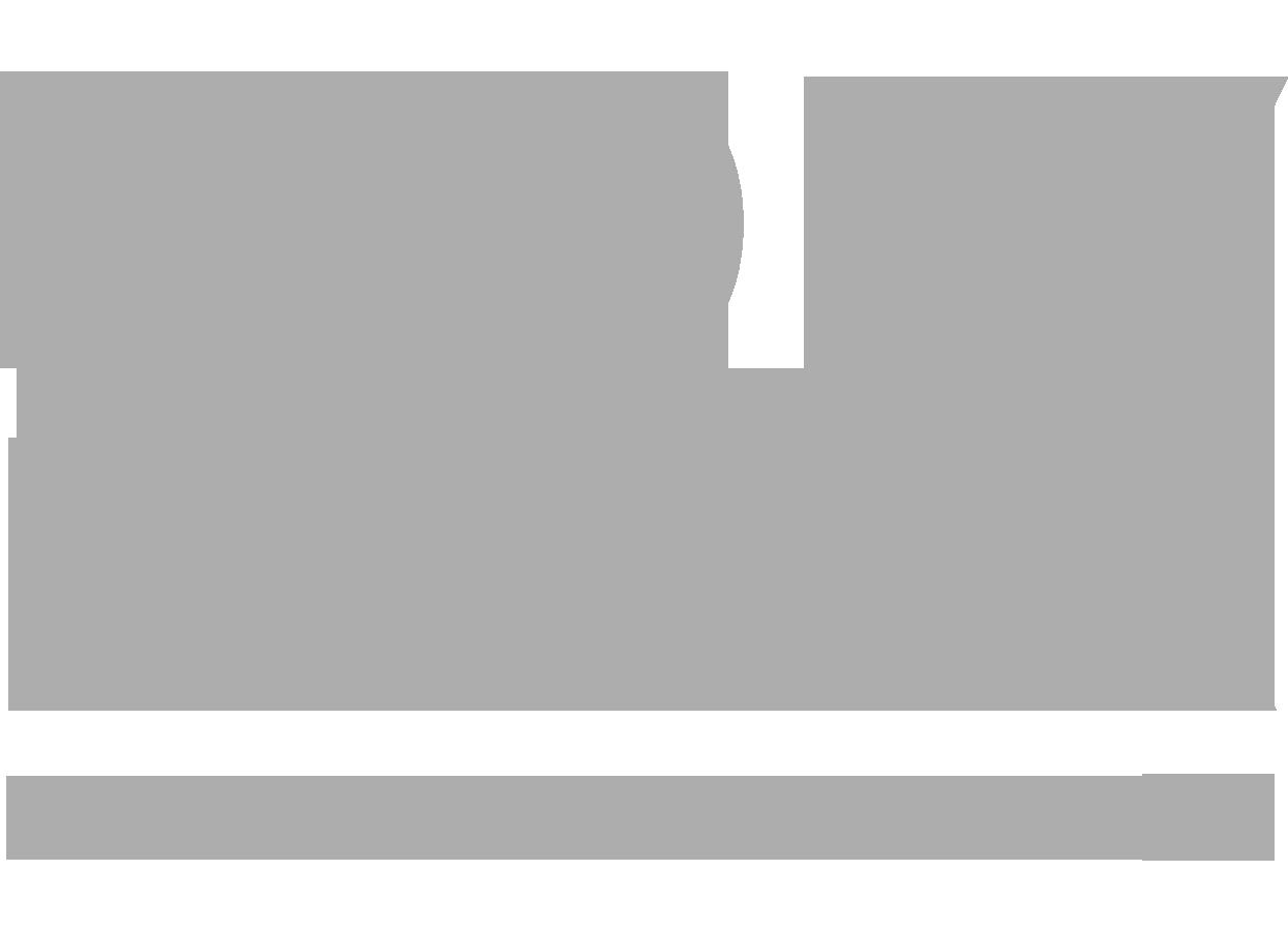 SD_Logo_grau.png
