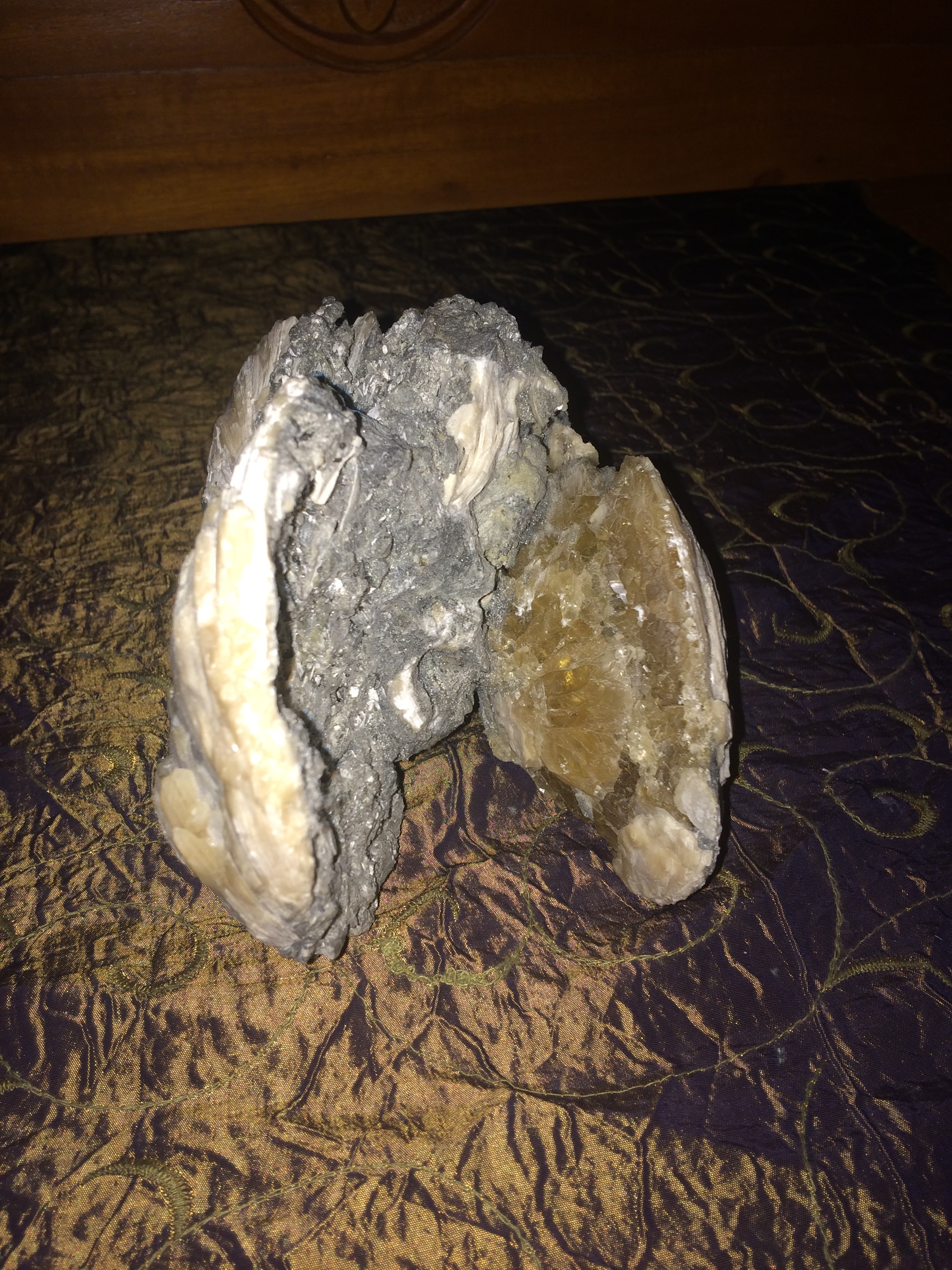 Fossilized Clam with Calcite Crystal from Florida SQ17 6x7x5 $350.00