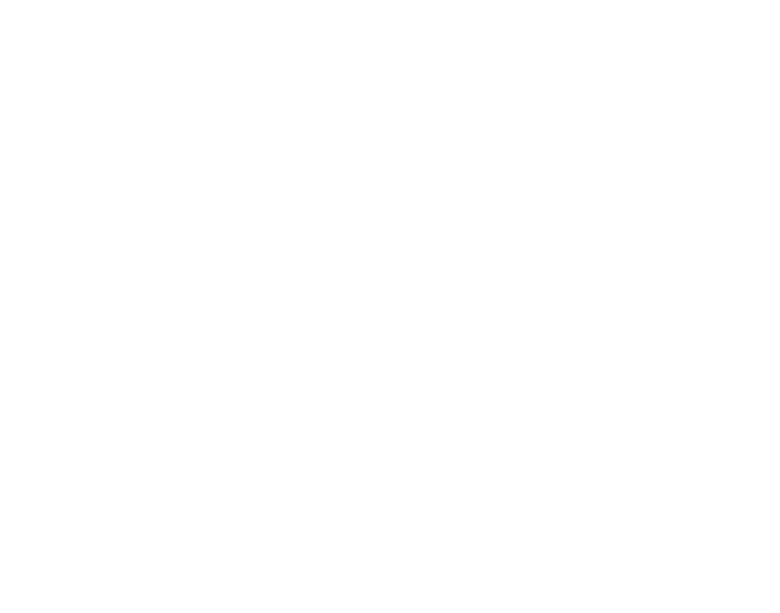 2017 IREA Logo_white.png