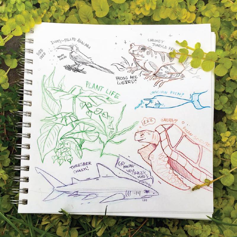 Aquarium Doodles 2