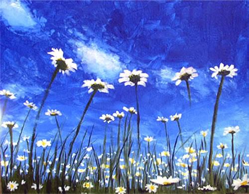 daisies 1.jpg