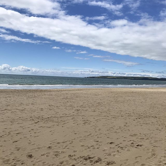 Sandbanks 🦀