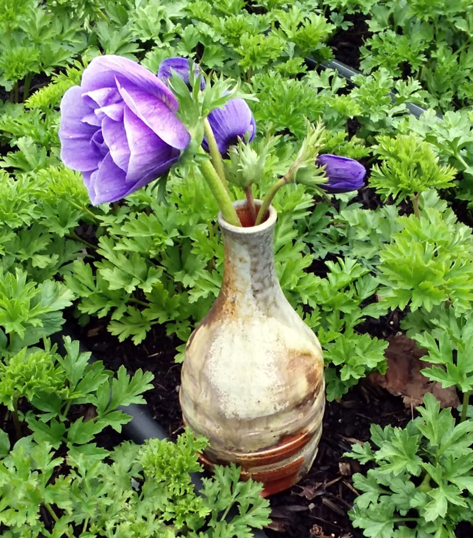 Wood-fired vase experiment with Howl and Whistle Flower Farm Anemones