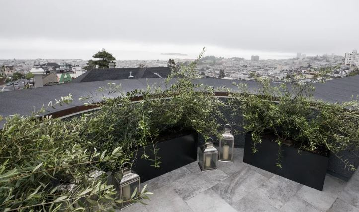 SF Curbed