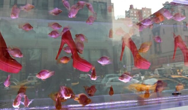 louboutins+swimming+with+fishes.jpg