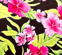 Fuchsia Aloha
