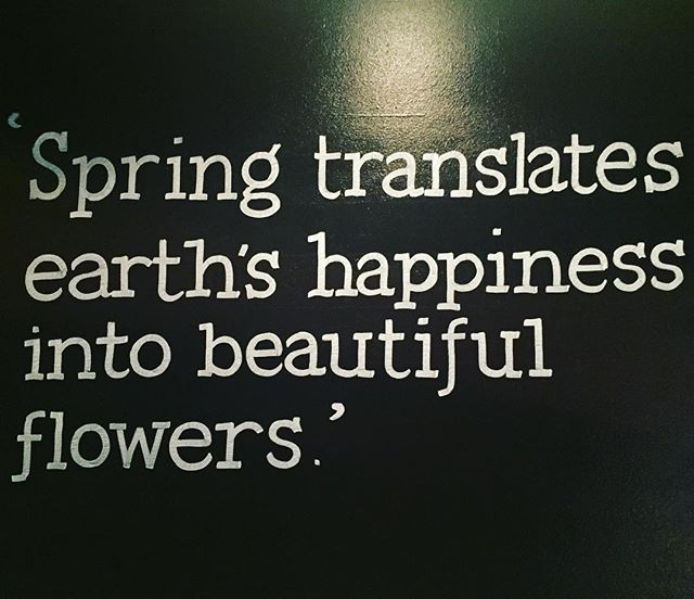 We couldn't agree more! 😍🌷🌻🌸🌹🌻🌼 #laceandblooms #spring #almostsummer #blooms #motherearth