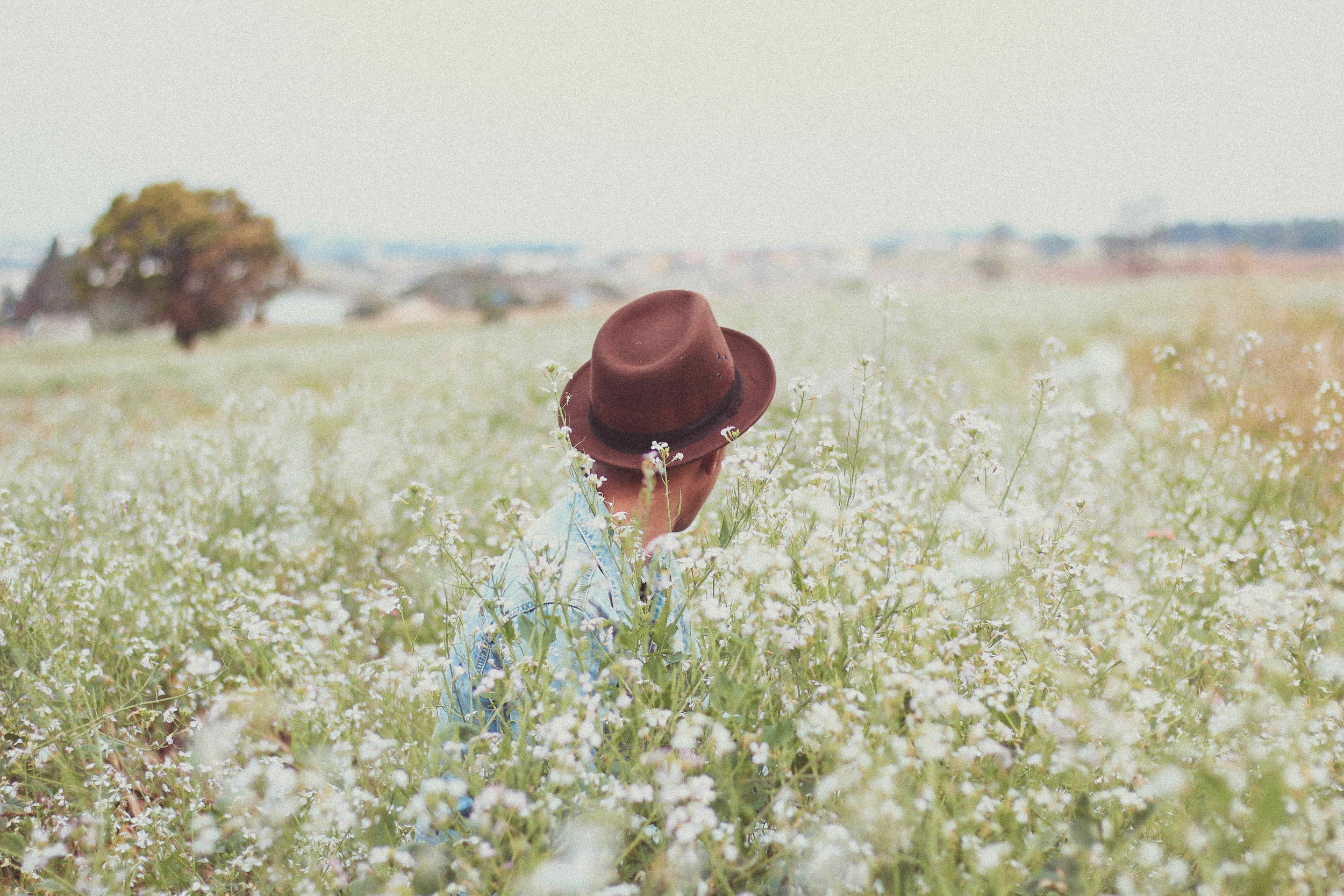 bossfight-free-stock-photos-man-hat-flowers-white[1].jpg