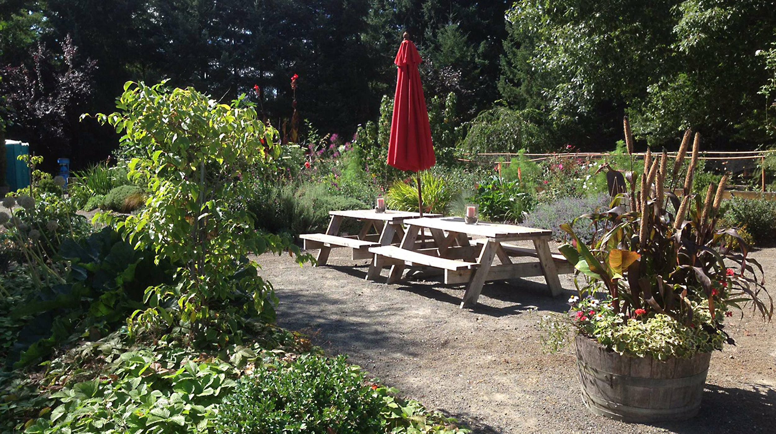 Picnic Tables in the Garden