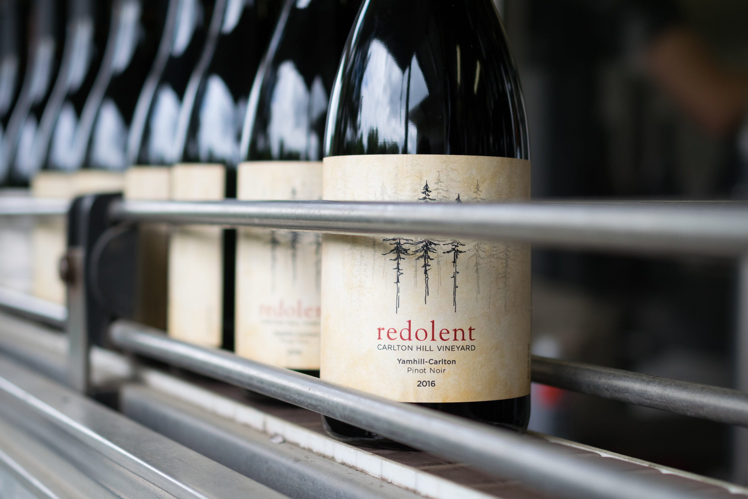 Redolent-2.jpg