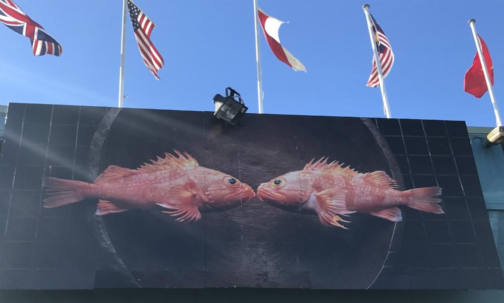 sydney-fish-market-1.jpg