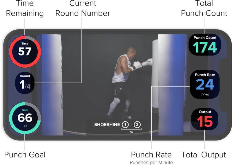 fightcamp-user-manual-live-screen.jpg