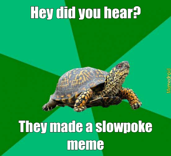 slowpoke.jpg