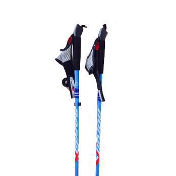 walker-poles.jpg