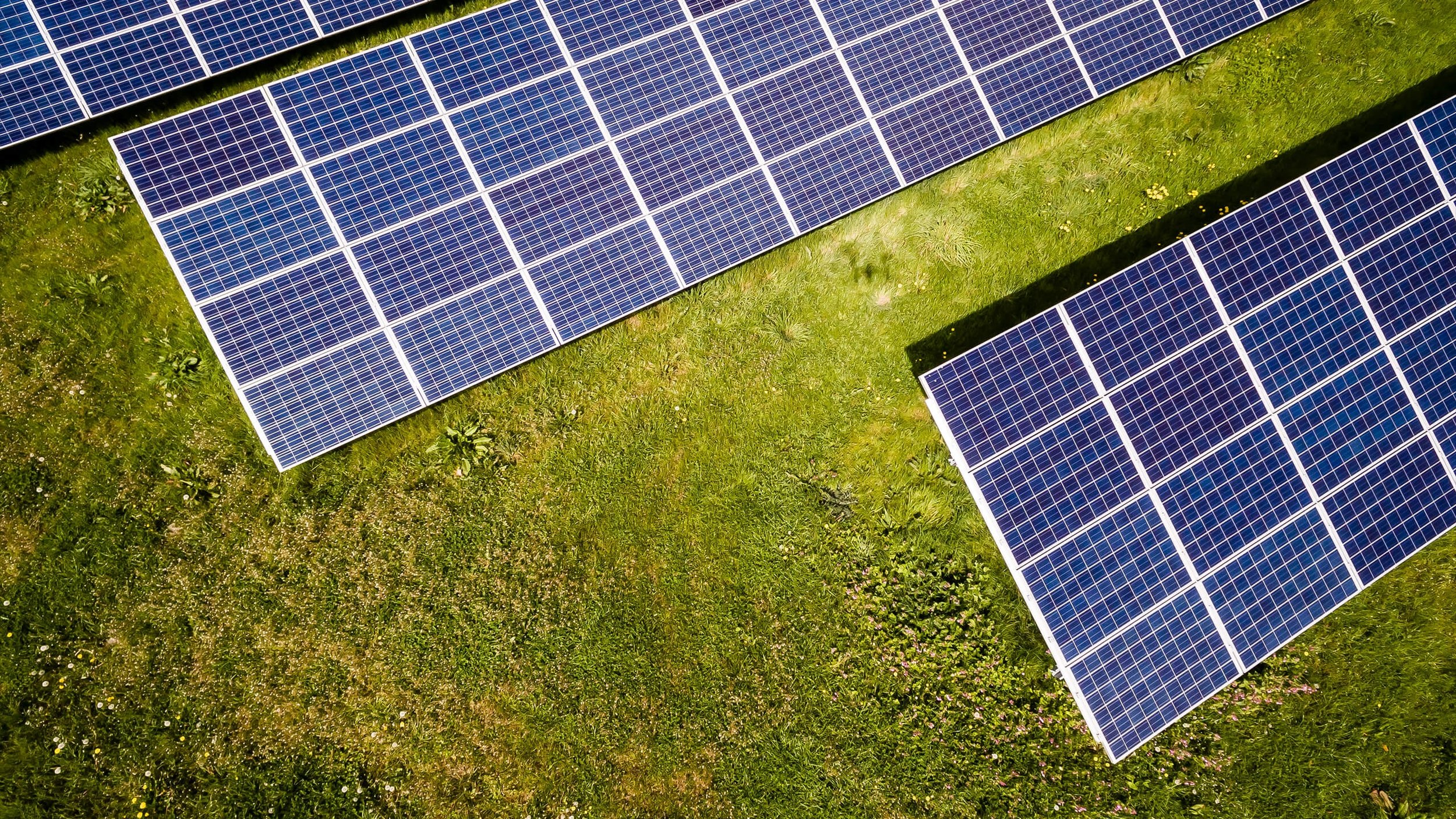 climate-change-green-new-deal-solar-field.jpg