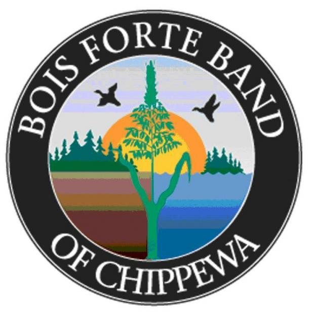 Logo BF.JPG