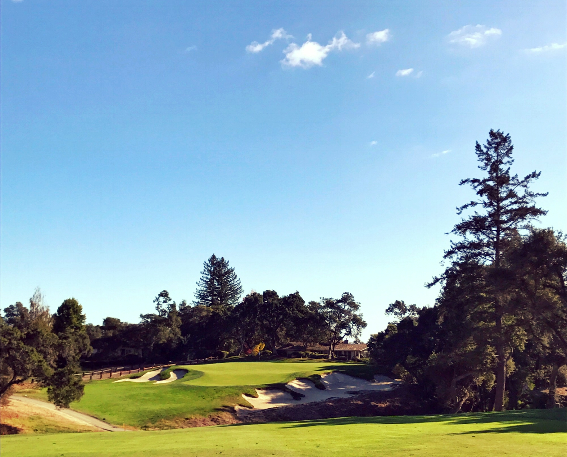 The sixteenth green at Pasatiempo, MacKenzie's favorite hole he ever designed.