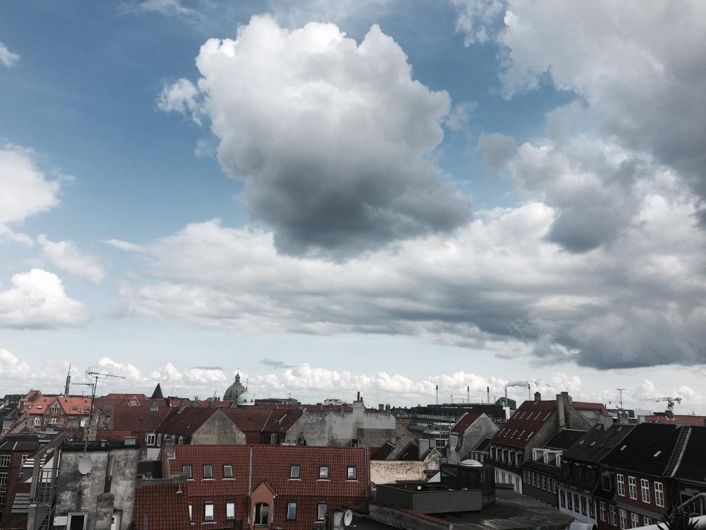 copenhagen roofs.jpg