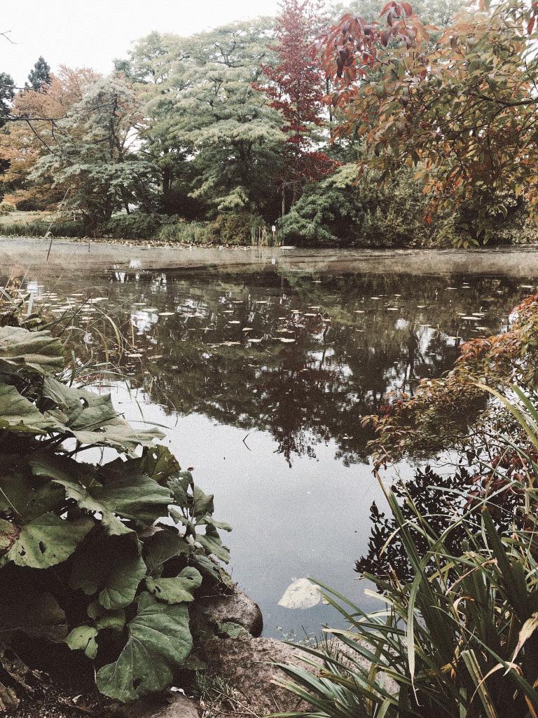 Botanical garden copenhagen