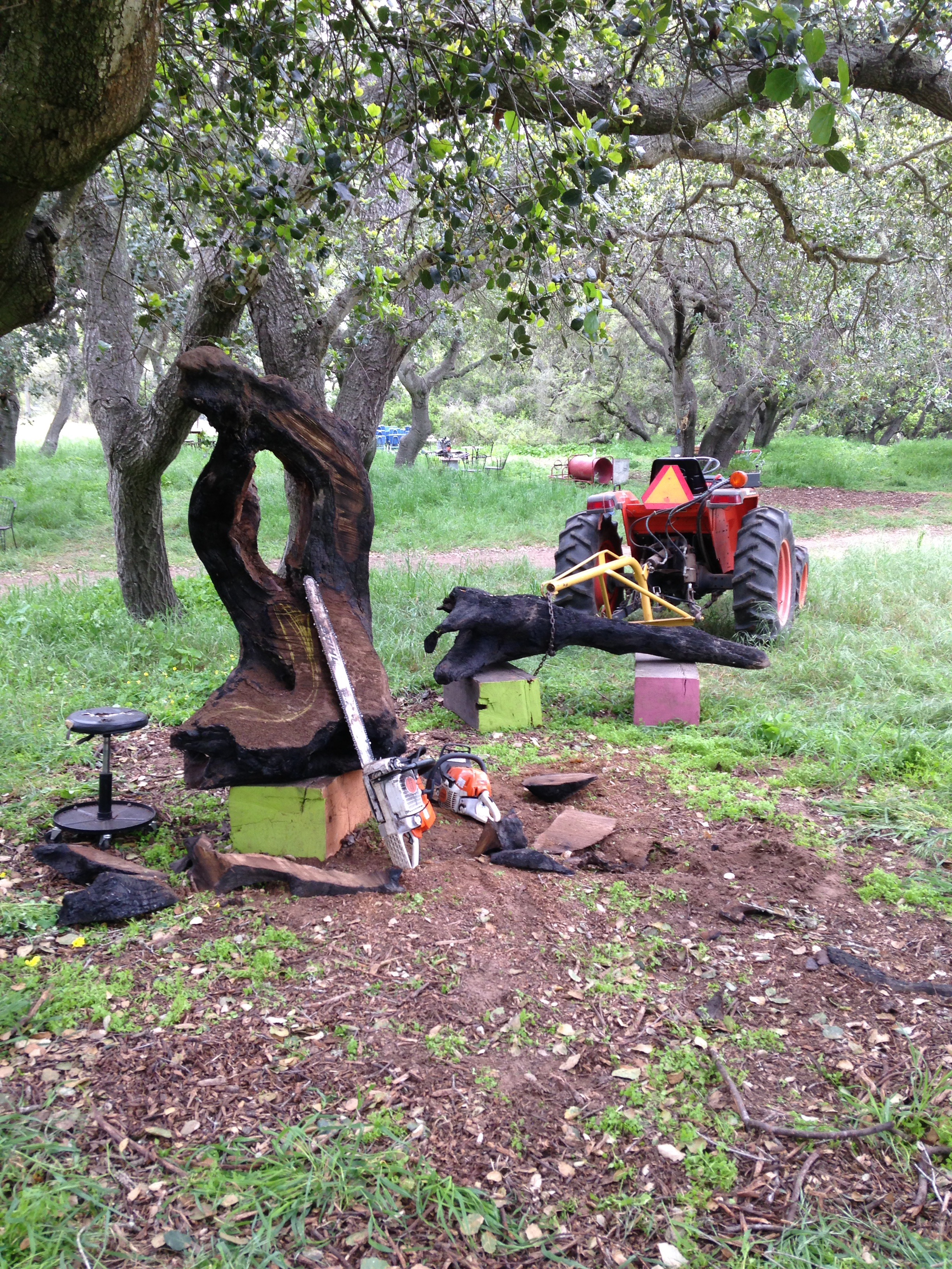 ben-riddering-chainsaw-carving