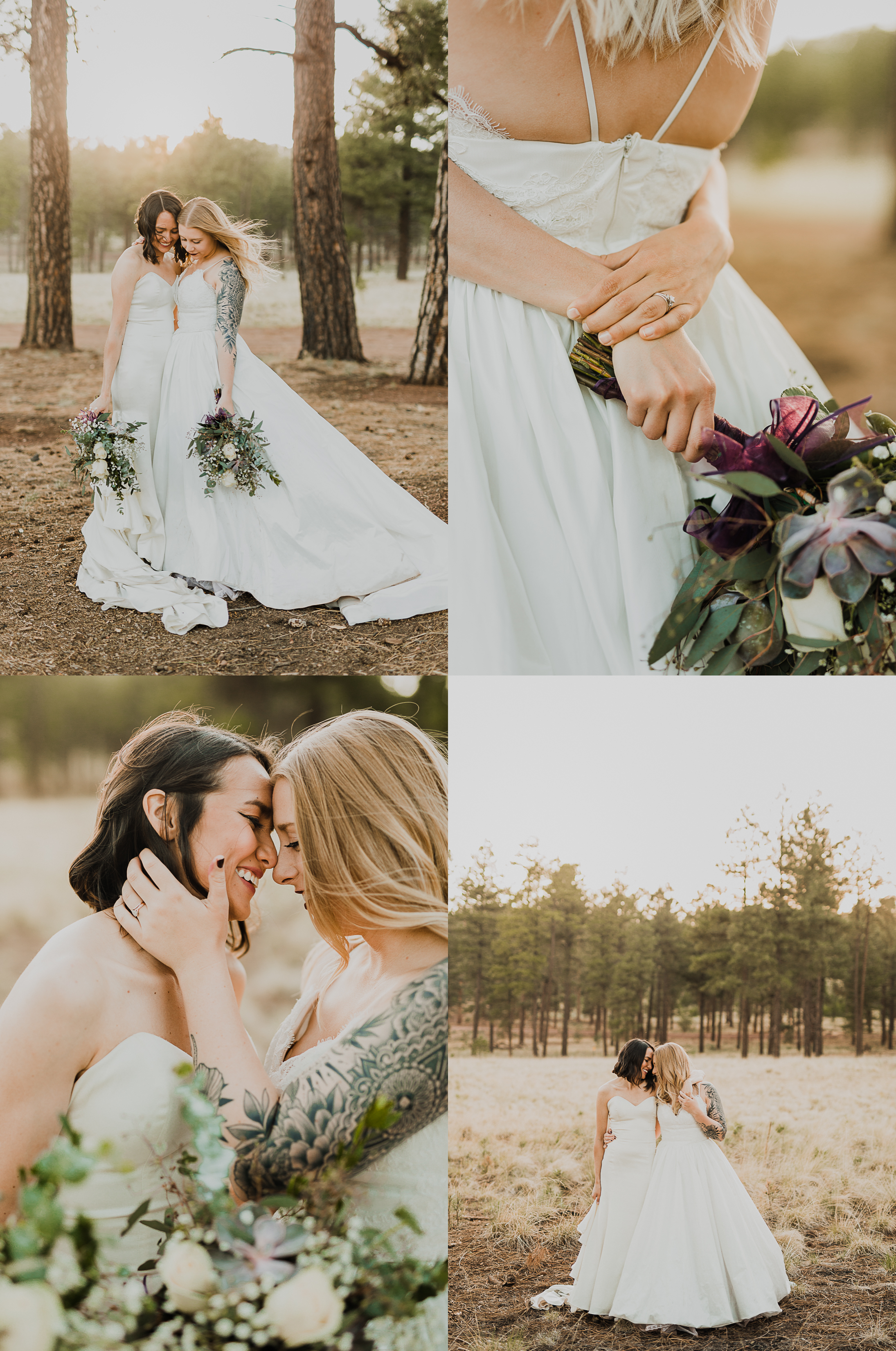 Denver Colorado Wedding Denver Colorado Wedding Elopement Engagement LGBT Gay Photographer Engagement LGBT Gay Photographer