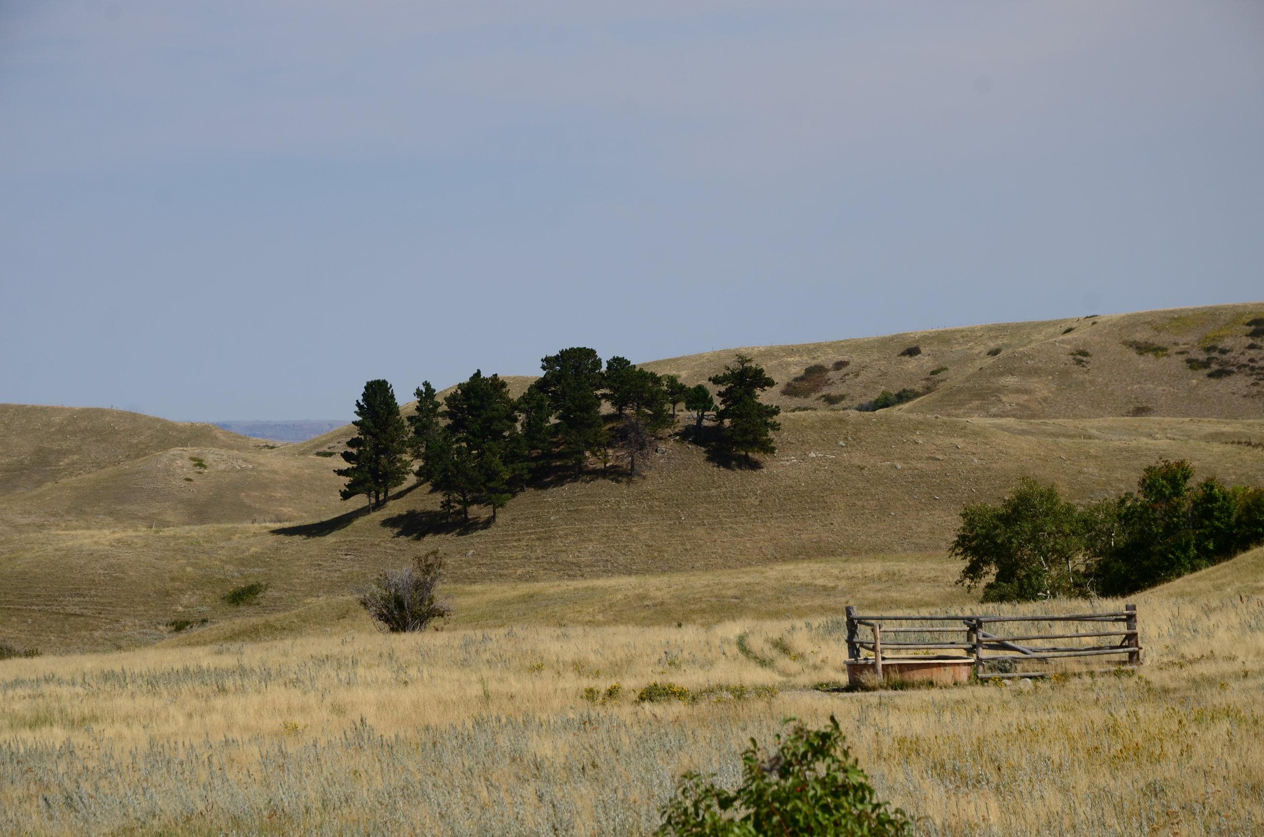 WY ranch