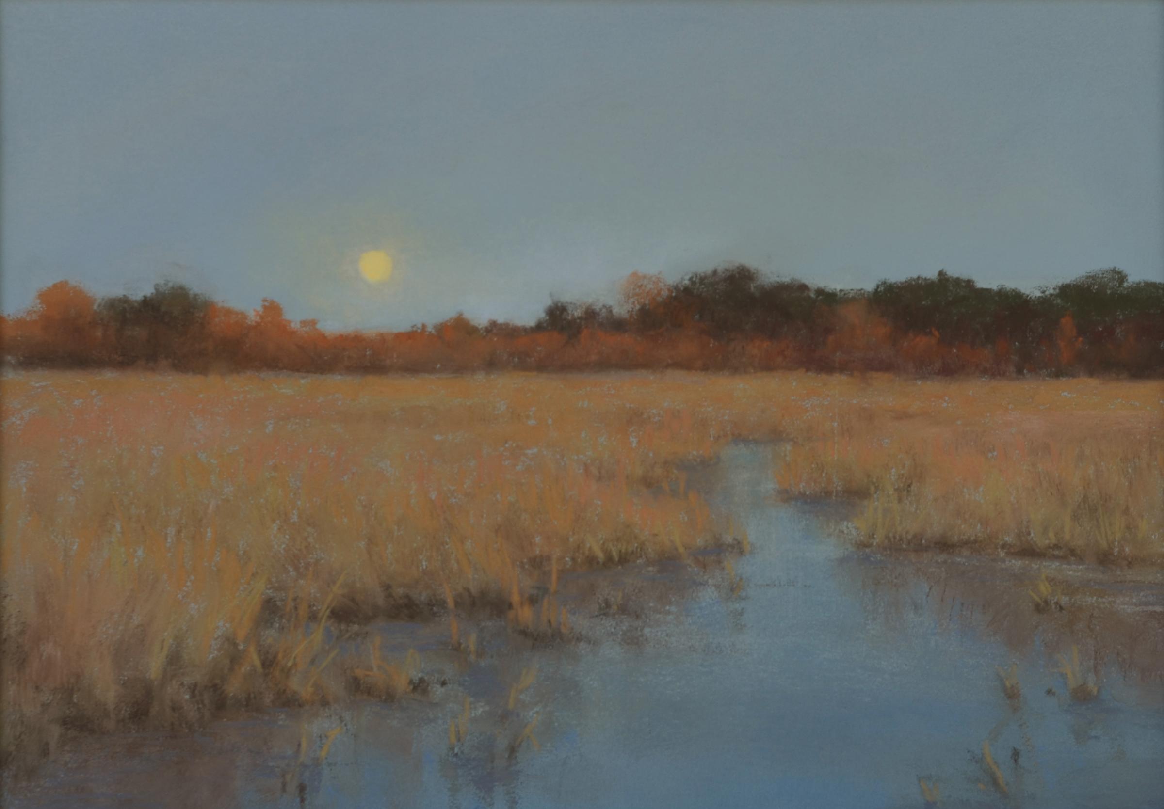 Marsh Moonlight 7.25 x 10.25 pastel