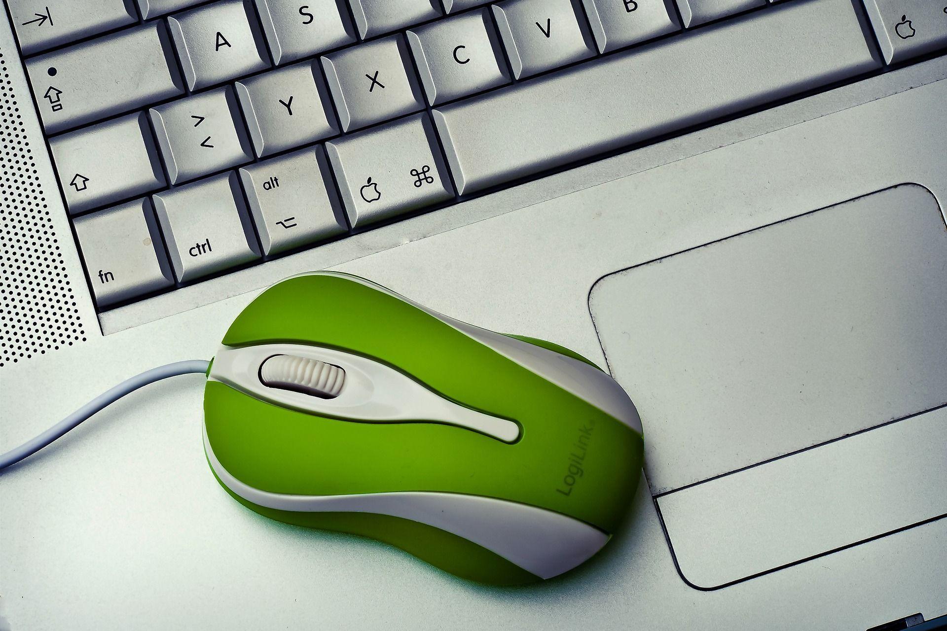 Online-Beratung - Für eine schnelle Einschätzung bei Ihren Problempflanzen.