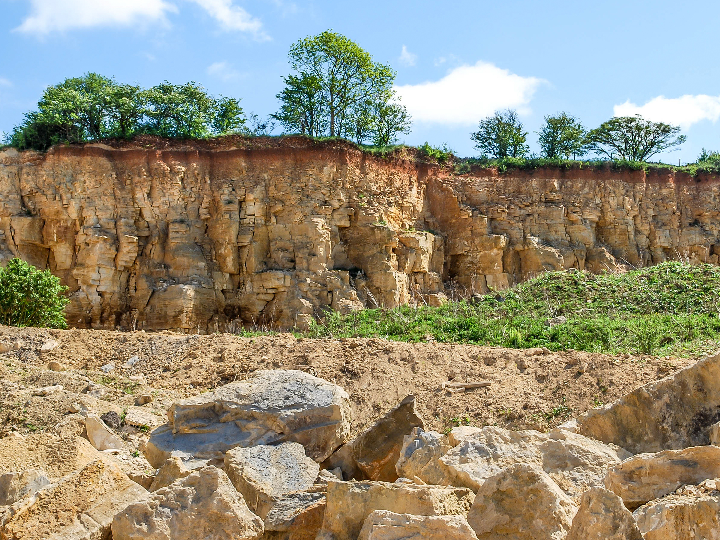quarry site subject to ecology surveys for Environmental statement