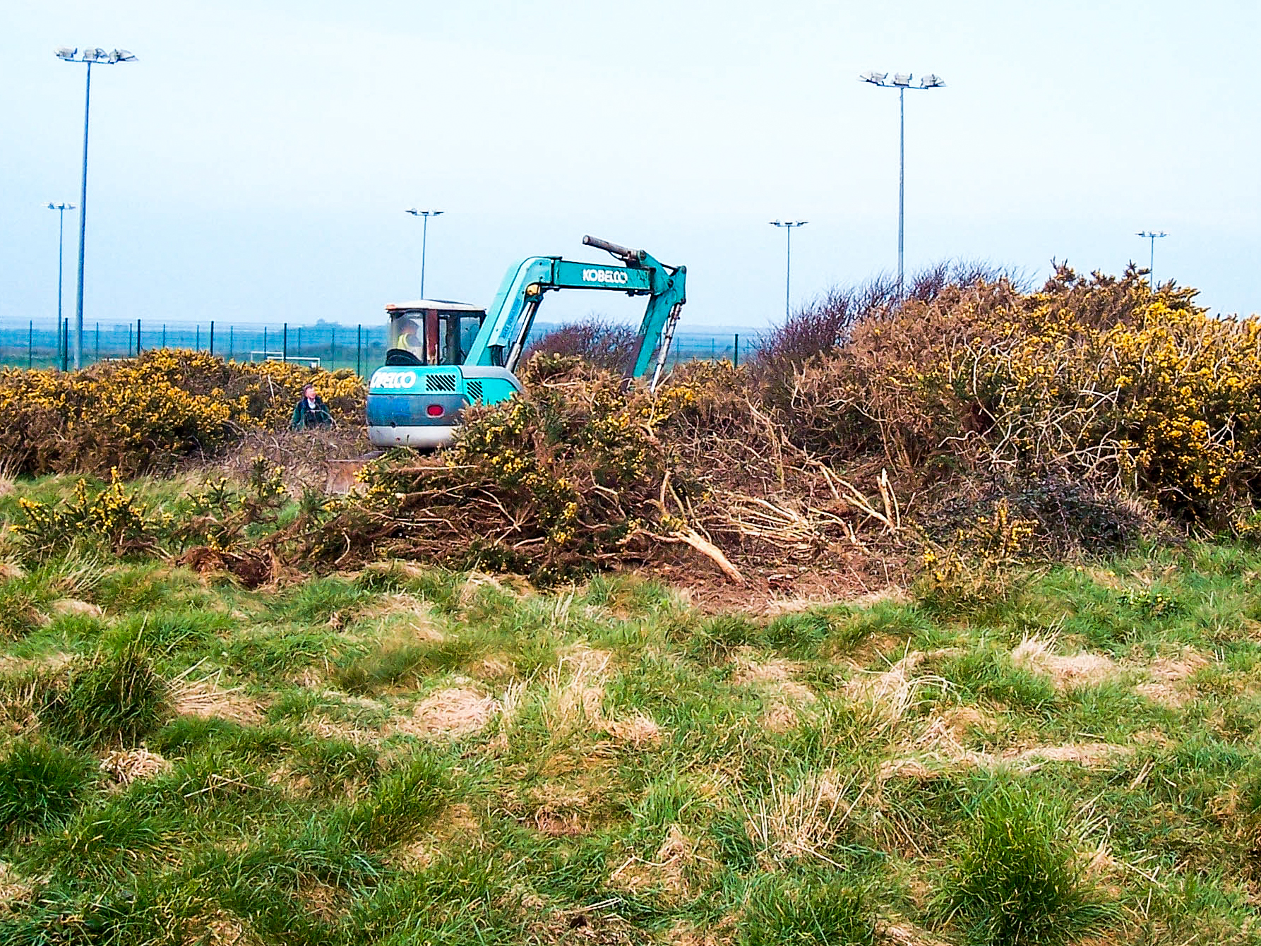 site supervision removal of dense scrub