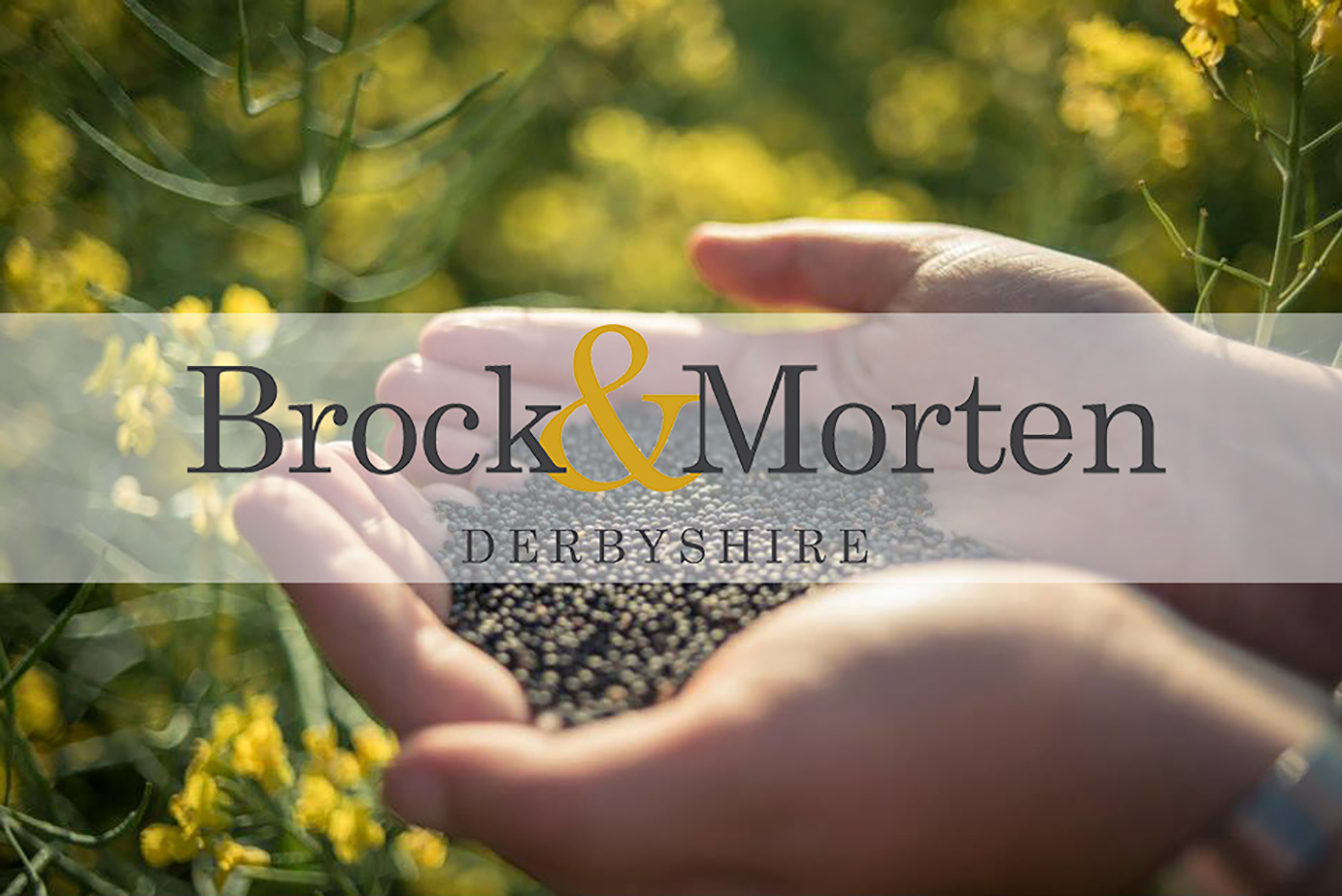 rapeseed oil producers Derbyshire