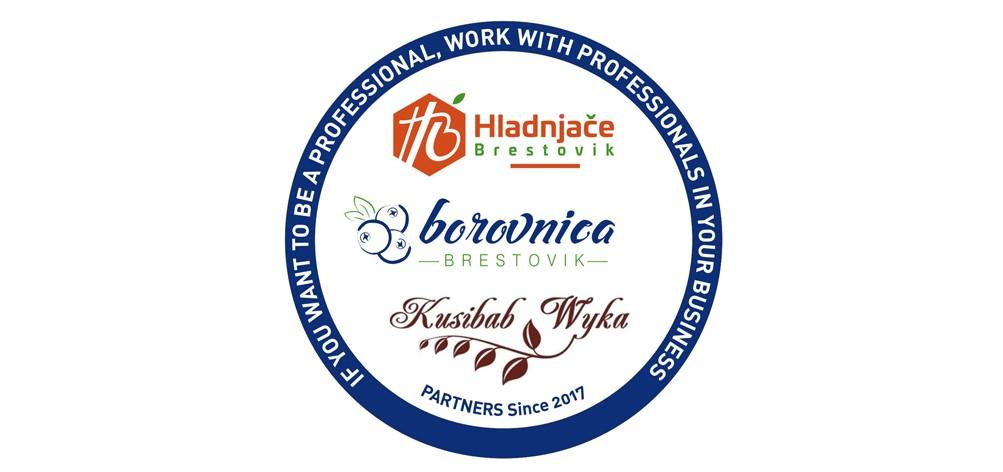 Borovnica.jpg