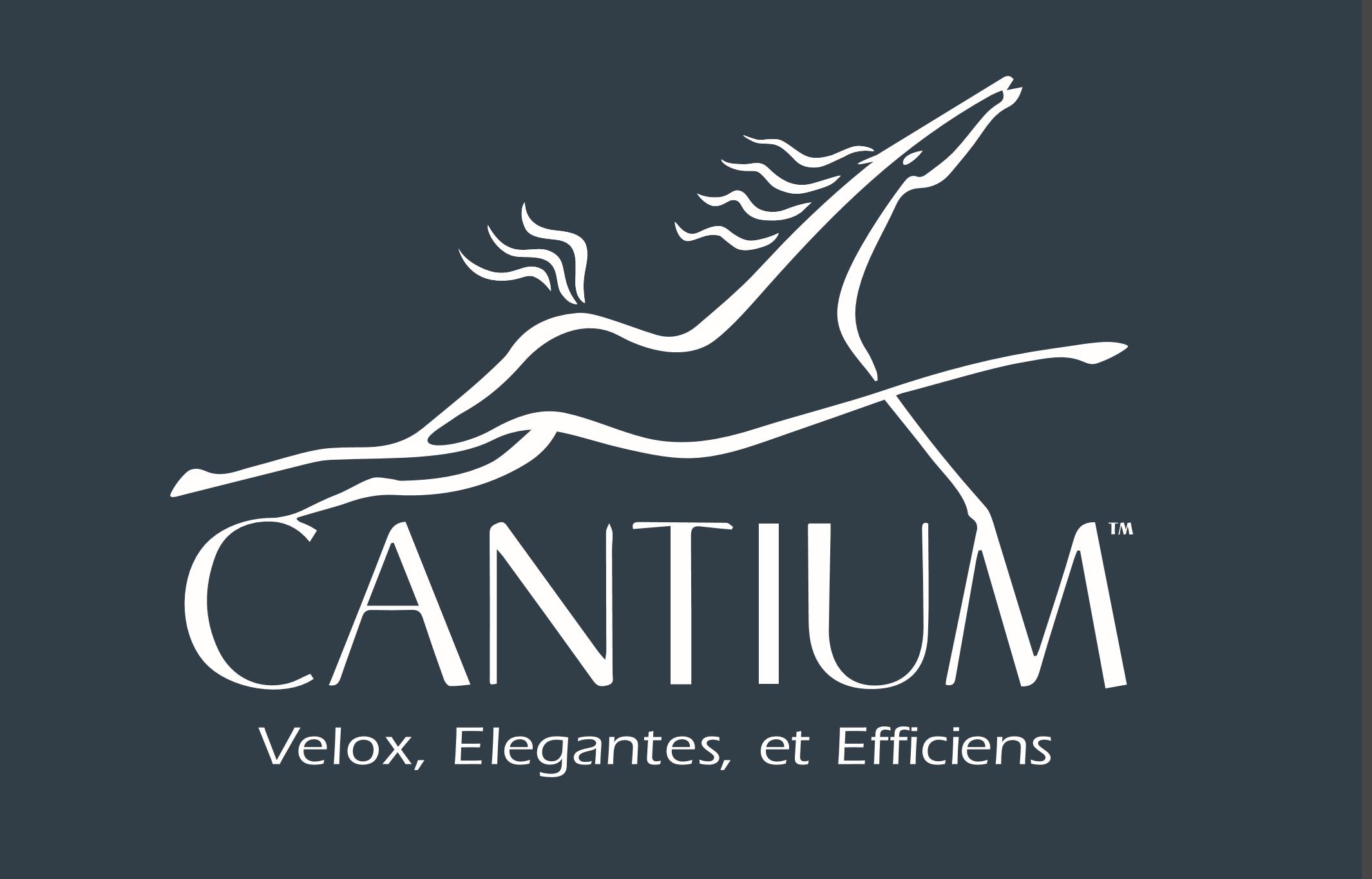 OPEX Customer - Cantium