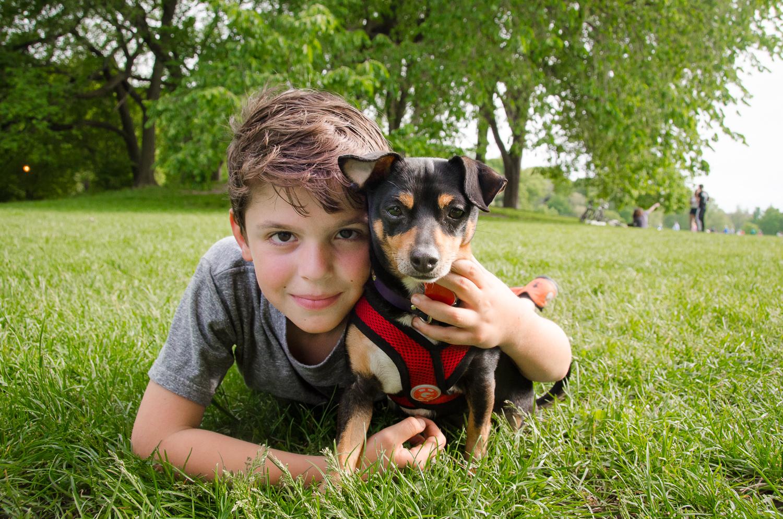 Pet Photography - Brooklyn & NYC