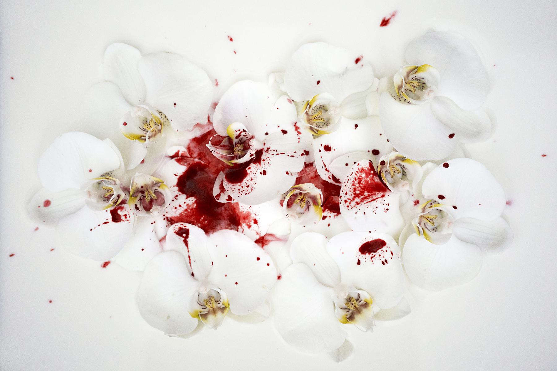 DSC05200.flowers-lnd-2018-sm.jpg