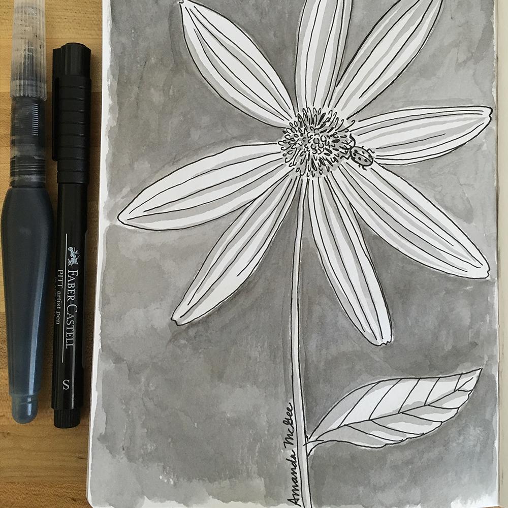 AmandaMcGee_Sketchbook_Daisy.jpg