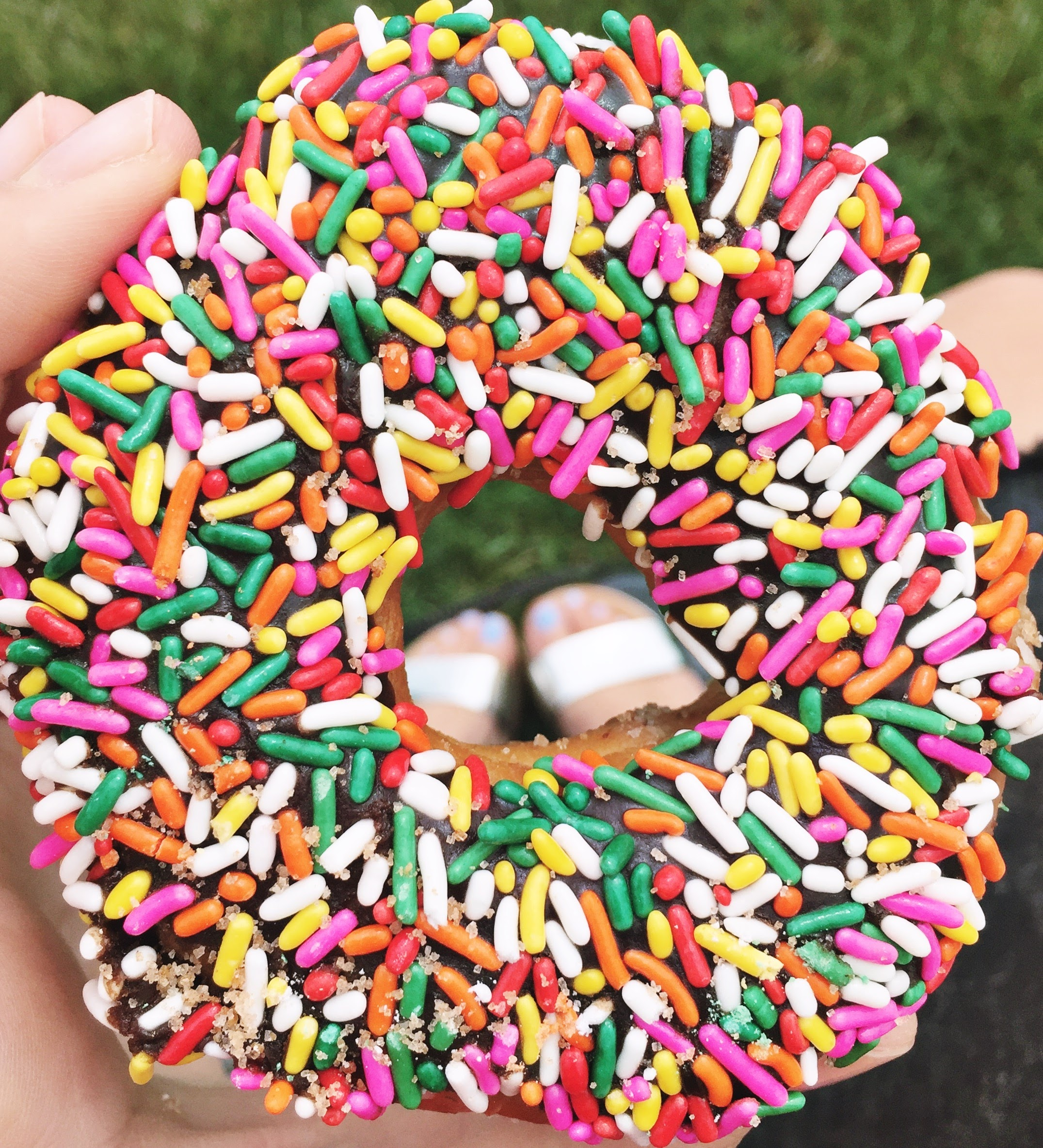 A donut from Back Door Donuts