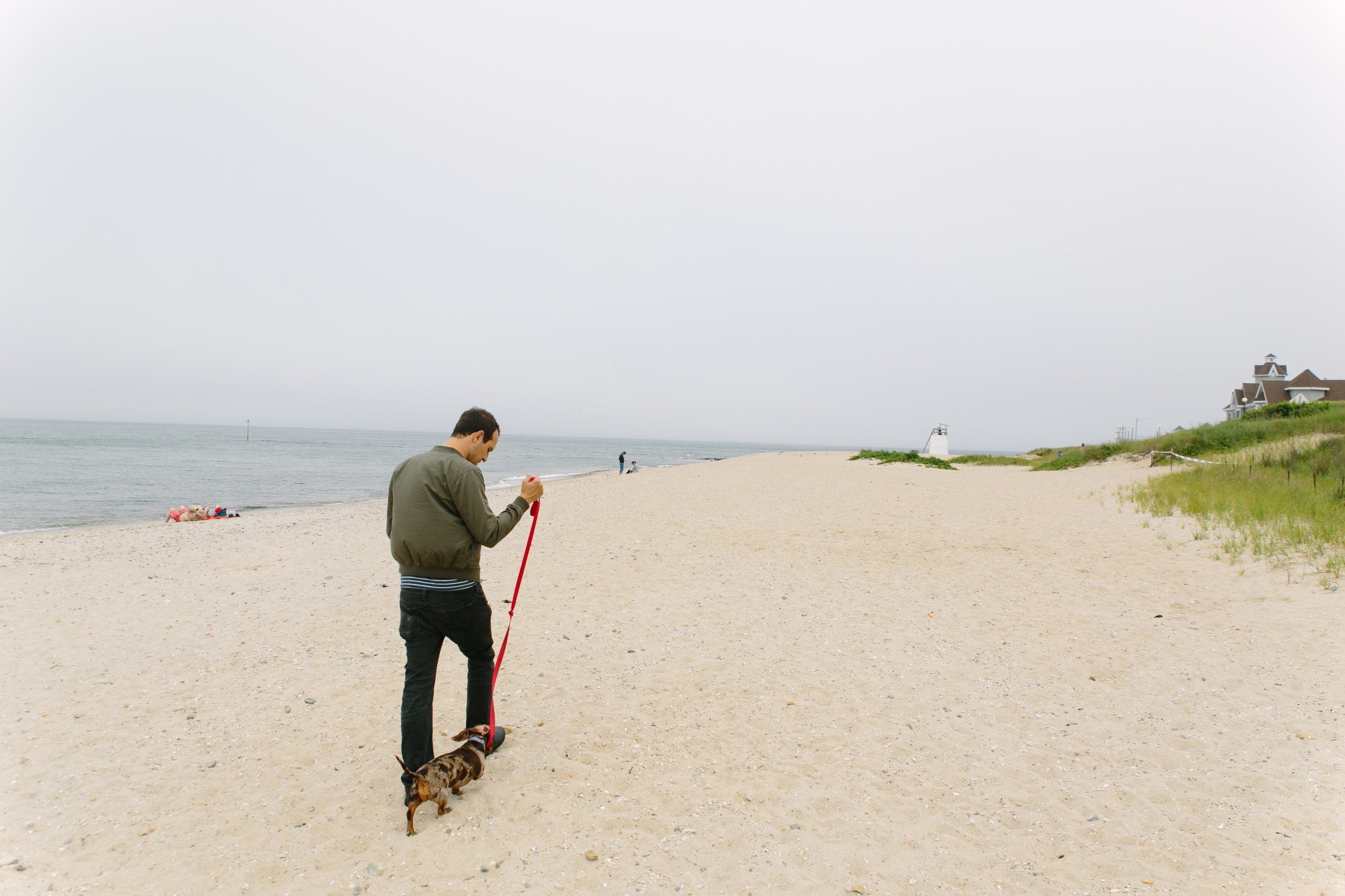Exploring the Oak Bluffs Town Beach during dog hours