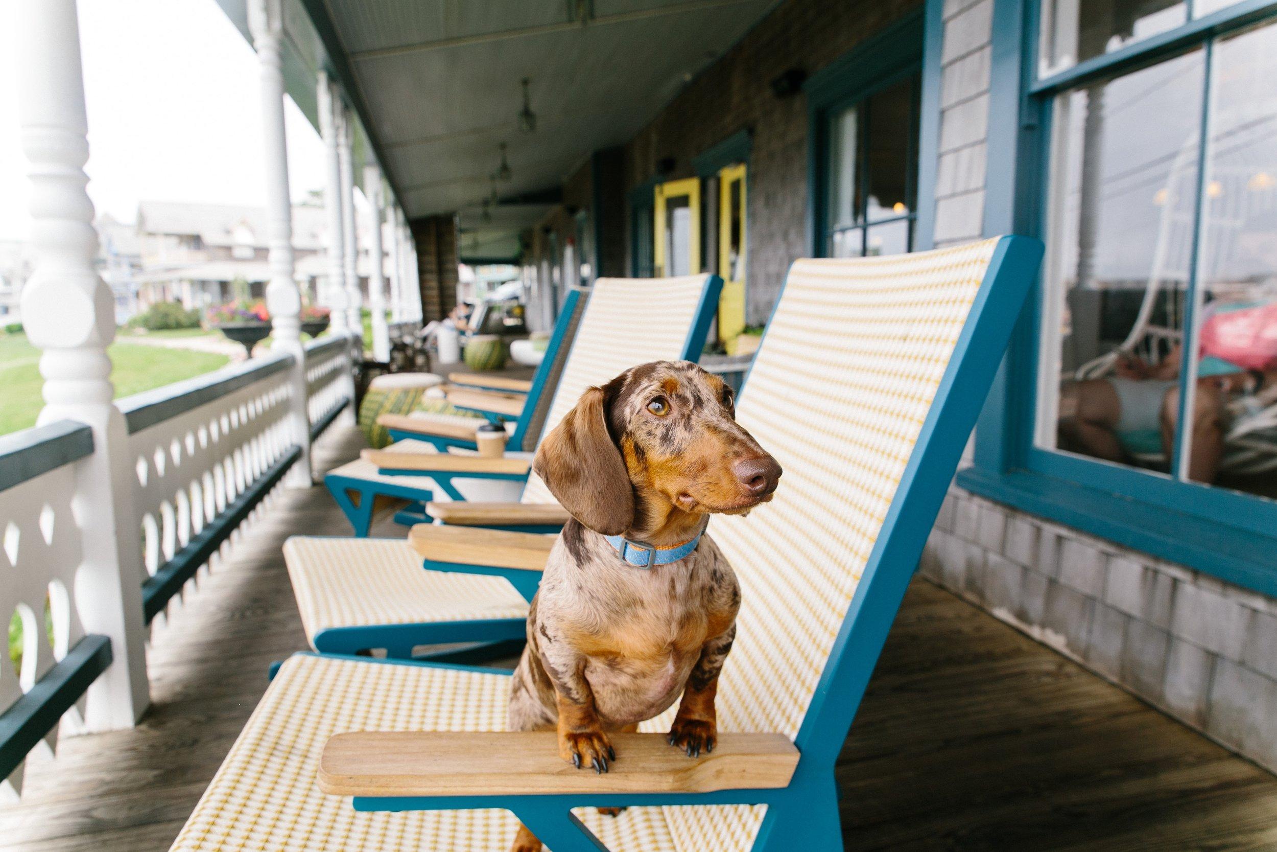 Dave enjoying the resort's front porch at Summercamp in Martha's Vineyard