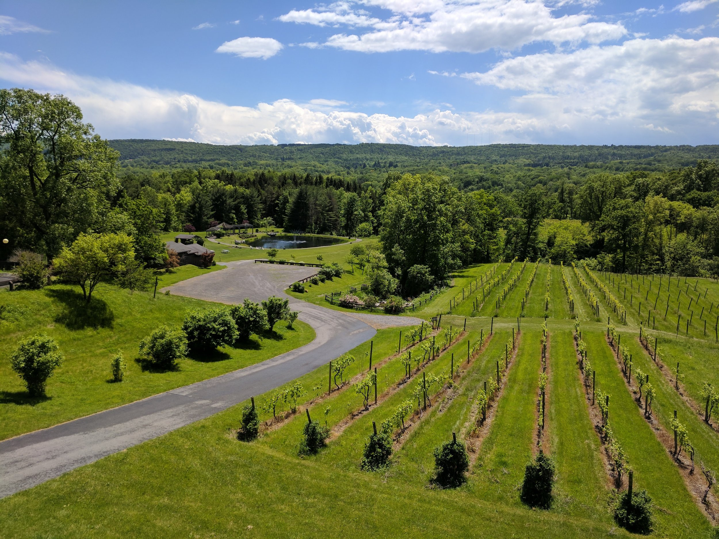 View from Six Mile Creek Winery